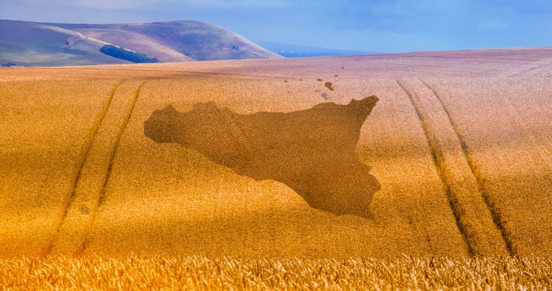 Agricoltura in Sicilia: finanziamenti fondo perduto al 100%